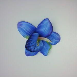 Orhidee-õis-019-1