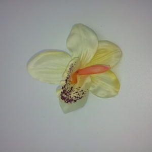 Orhidee-õis