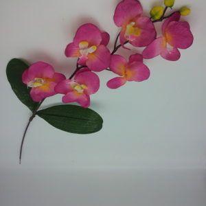 Orhidee-oks-0850-8