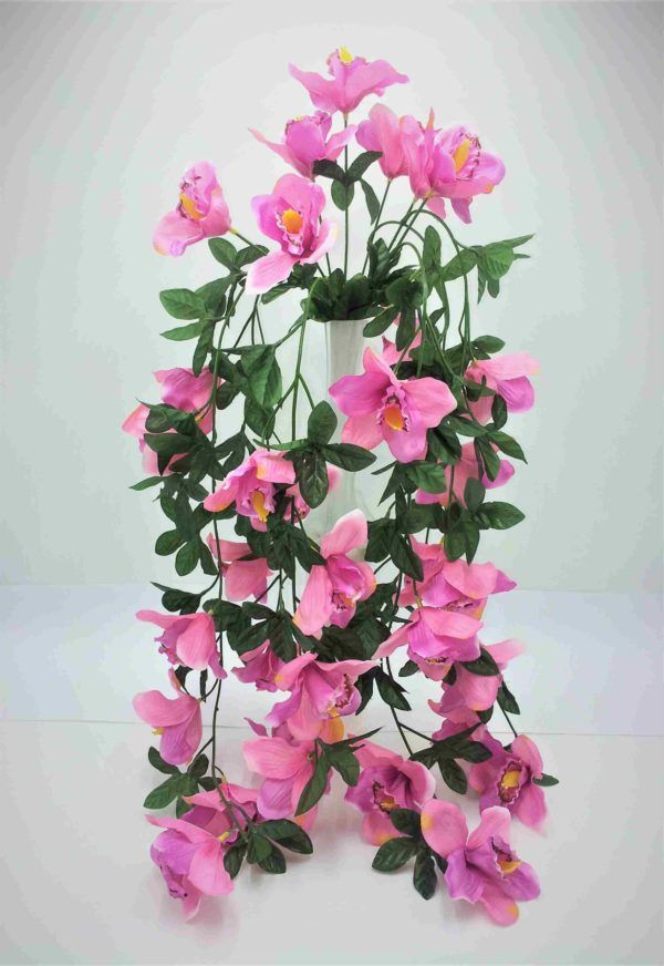 Orhidee-riputis-2
